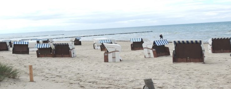Blick zum Strand, © Kurverwaltung Insel Poel (Author: © Kurverwaltung Insel Poel)