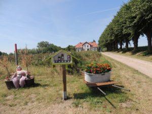 Blick auf die Zufahrt nach Einhusen, © Kurverwaltung Insel Poel (Author: © Kurverwaltung Insel Poel)