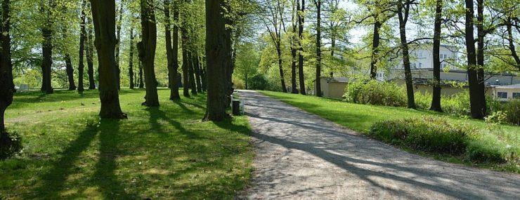 Hippodrom im Schlossgarten, © Tourismusverband Mecklenburg-Schwerin (Author: © Tourismusverband Mecklenburg-Schwerin)
